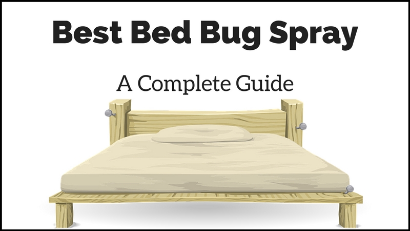 Best Bed Bug Spray