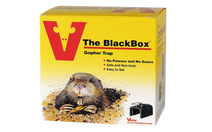 What are the best gopher killing traps