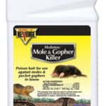Gopher Poison Reviews: 5 Best Gopher Killers & Poison Baits