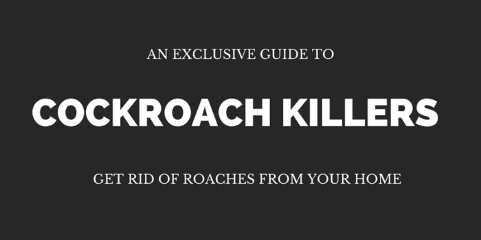 6 Best Roach Killers Of 2017 Eliminate Cockroaches In