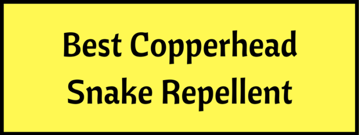 Best Snake Repellent for Copperheads
