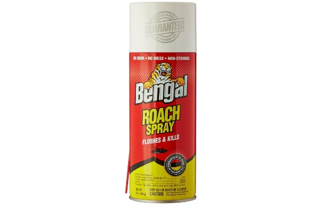 Best Roach Spray for Home