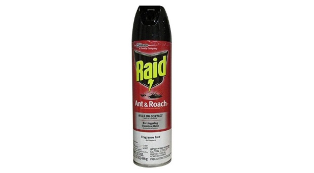 Best Roach Spray on the Market