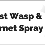 5 Best Wasp Killer 2017: Reviews of Wasp & Hornet Killers