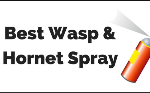 most effective wasp killing product