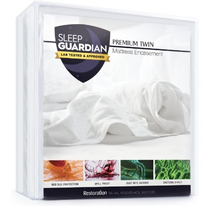 Top rated mattress encasement for bed bugs