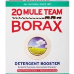 How to Use Borax to Kill Fleas: A Complete Guide