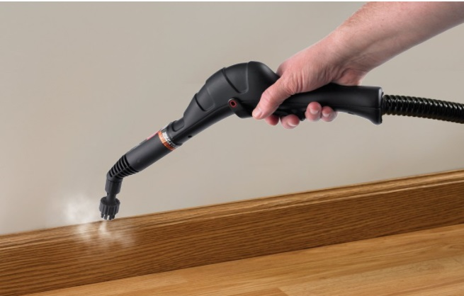 Best Steam Cleaner For Bed Bugs A Complete Guide For 2017