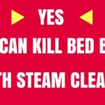Best Steamer for Bed Bugs: 5 Most Effective Steam Cleaners (in 2018)