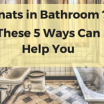 Gnats in Bathroom: 5 Most Effective Ways to Get Rid of Gnats
