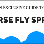 5 Best Horse Fly Spray: Killers and Repellents for Flies in 2017