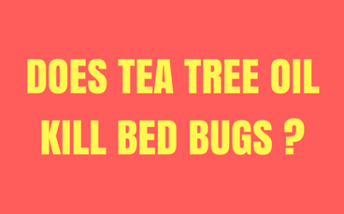 does tea tree oil repel bed bugs?