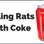 Killing Rats with Coke (Coca Cola or Pepsi): Does It Really Work?