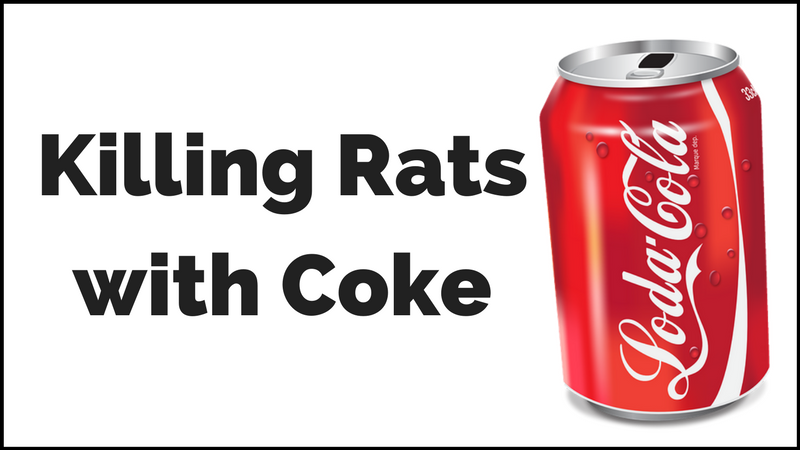 killing rats with coke coca cola or pepsi does it really work. Black Bedroom Furniture Sets. Home Design Ideas