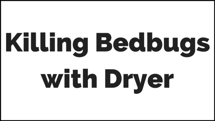 What Dryer Temperature Kill Bed Bugs