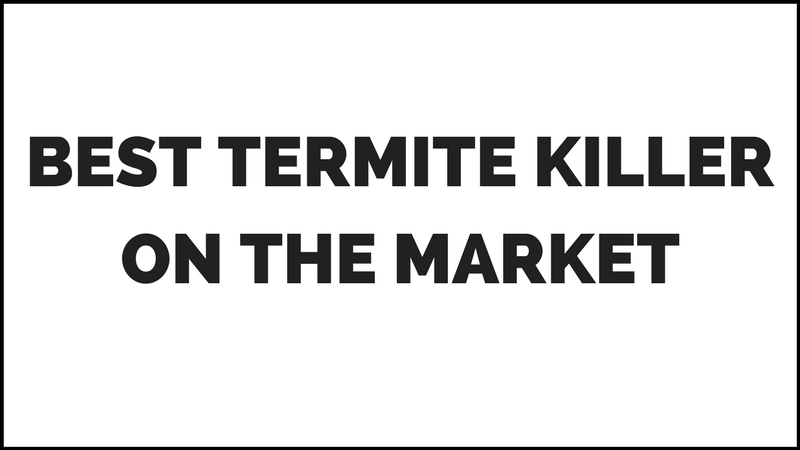 Best Termite Spray for wood