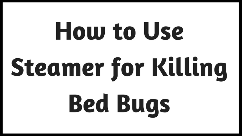 How To Steam Your House For Bed Bugs