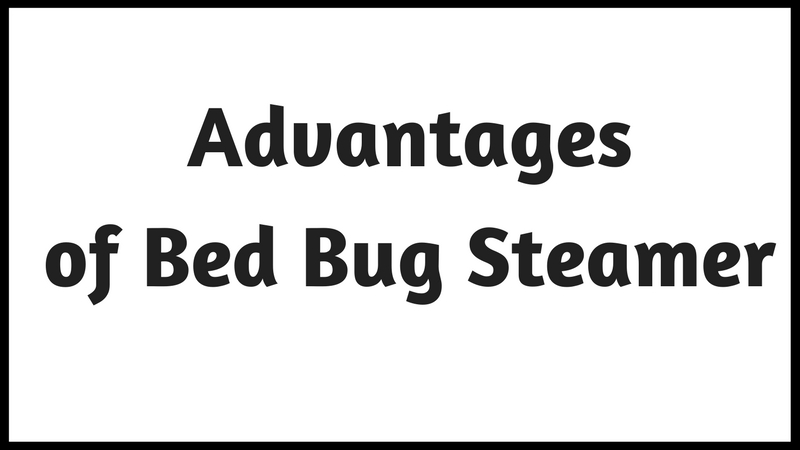 Killing Bed Bugs with Steam Cleaner