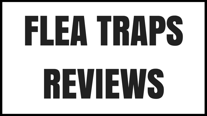 flea trap reviews