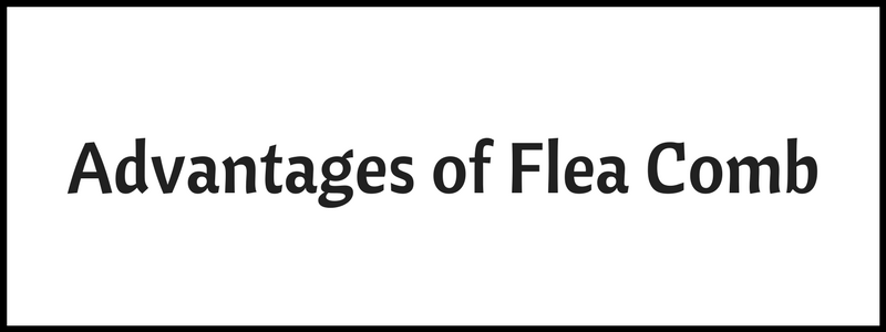 Advantages of Flea Comb
