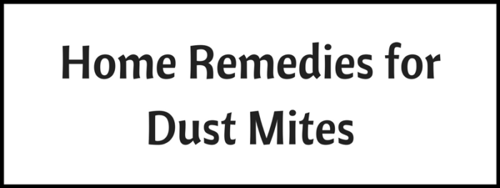 Dust Mites Treatment