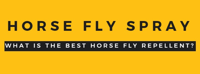 Fly Spray for Horses that really works