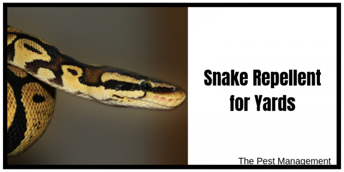 Snake Repellent for Copperheads and Rattlesnakes
