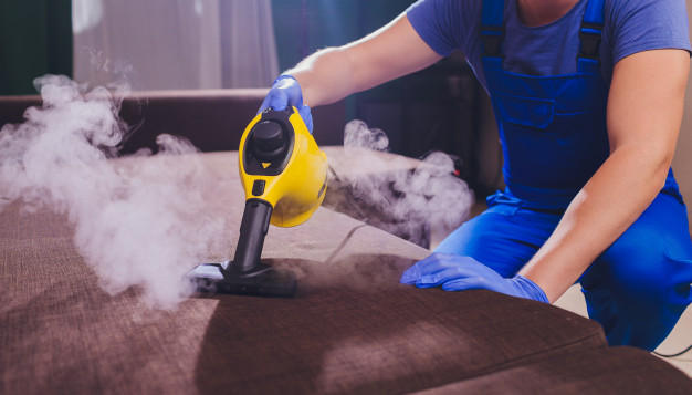 Kill fleas with steam cleaners